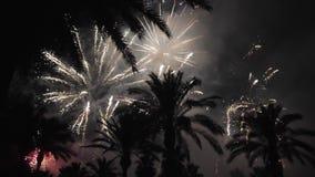 Feuerwerke mehrfach feuerwerk Bunte Feuerwerke atn Feiertagsnacht stock footage