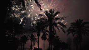 Feuerwerke mehrfach feuerwerk Bunte Feuerwerke atn Feiertagsnacht stock video
