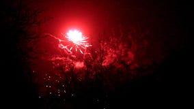 Feuerwerke nachts Feiertag mit Ton stock footage