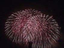 Feuerwerke rot Lizenzfreie Stockfotografie
