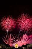Feuerwerke am Vatertag stockbild