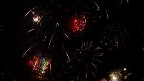 Feuerwerke von den mehrfachen Farben, die nachts bersten stock video