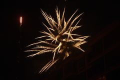 Feuerwerks-Blume stockbild