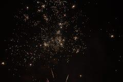 Feuerwerks-Blume lizenzfreies stockbild