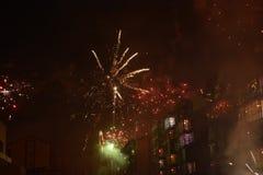 Feuerwerks-Blume lizenzfreie stockfotografie