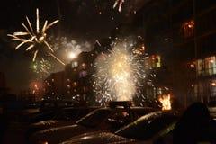 Feuerwerks-Blume stockfotografie