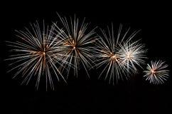 Feuerwerksanzeige lizenzfreie stockfotos