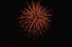 Feuerwerksblüte auf Himmel in der Nacht Stockbild