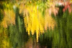 Feuillage coloré réfléchi sur l'eau ondulée Photographie stock libre de droits