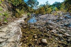 Feuillage d'automne au parc d'état perdu d'érables dans le Texas image libre de droits