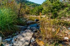 Feuillage d'automne au parc d'état perdu d'érables dans le Texas image stock