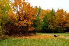 Feuillage d'automne Boise Idaho Albertson Park Photo stock