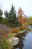 Feuillage d'automne Boise Idaho Albertson Park Photo libre de droits