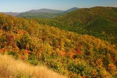 Feuillage d'automne dans les montagnes images stock