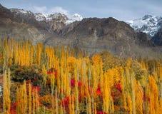 Feuillage d'automne dans une vallée photos stock