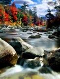 Feuillage d'automne de la Nouvelle Angleterre Photographie stock