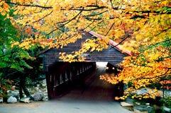 Feuillage d'automne de la Nouvelle Angleterre Photos stock