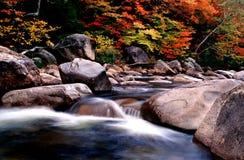 Feuillage d'automne de la Nouvelle Angleterre Image libre de droits