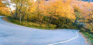 Feuillage d'automne de montagne au Vermontn, USA photo stock