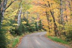 Feuillage d'automne sur la route de campagne Photographie stock libre de droits