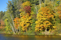 Feuillage d'automne sur le rivage de l'étang de moulin, le Connecticut Photographie stock
