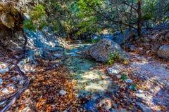 Feuillage d'automne sur les arbres d'érable renversants, avec de l'eau de grands rochers et clair dans les érables perdus photos libres de droits