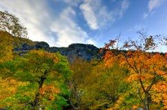 Feuillage d'automne Vermont image stock