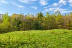 Feuillage de ressort le long de Ridge Parkway bleu en Virginie photographie stock