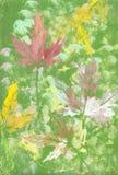 Feuillage des arbres illustration de vecteur