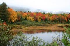 Feuillage et étang d'automne du Maine Photo stock