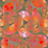 Feuillage floral abstrait de rose de modèle Photos libres de droits