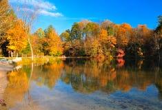Feuillage maximal d'automne à un lac images libres de droits