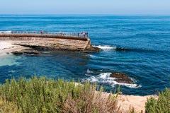 Feuillage placé sur Cliff Overlooking la piscine du ` s d'enfants de La Jolla images stock