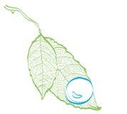 Feuillage vert illustration stock