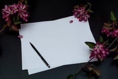 Feuille blanche pure de papier, de stylo et de fleurs roses sur un fond noir Photos libres de droits