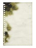 Feuille brûlée et détruite de papier rayé carbonisé blanc D'isolement Images stock