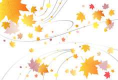 Feuille d'érable Autumn Abstract Background Vector Illustration Stock