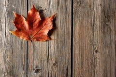 Feuille d'érable d'automne au-dessus de fond en bois Photo stock