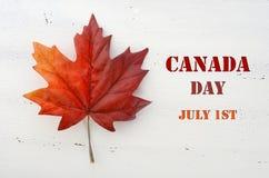 Feuille d'érable en soie rouge de jour heureux de Canada Photos stock