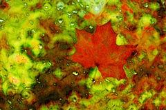 Feuille d'érable rouge dans l'abstraction photographie stock