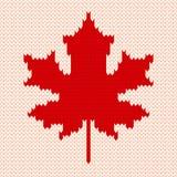 Feuille d'érable sur le blanc - modèle de tricotage sans couture Images libres de droits