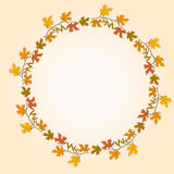 Feuille d'automne Image stock