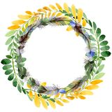 Feuille d'automne de guirlande d'acacia dans un style tiré par la main d'aquarelle Photos libres de droits