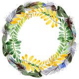 Feuille d'automne de guirlande d'acacia dans un style tiré par la main d'aquarelle Photo stock