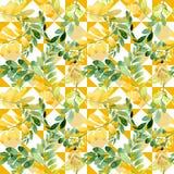 Feuille d'automne de modèle d'acacia dans un style tiré par la main d'aquarelle Photos stock