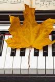 Feuille d'automne sur le piano Photo libre de droits