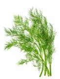 Feuille d'herbe d'aneth d'isolement sur le blanc Ingrédient de nourriture Photographie stock