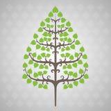 Feuille de bodhi d'arbre illustration stock