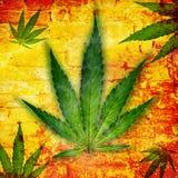 Feuille de cannabis, usine de marijuana illustration libre de droits