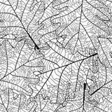 Feuille de chêne illustration stock